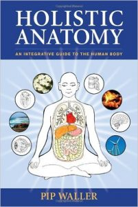 holisticanatomy